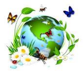 Environnement (vignette)